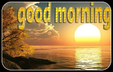 158 Best Images About Good Morning On Pinterest  Glitter. Stoney Creek Animal Hospital. What Are The Symptoms Schizophrenia. Lease Property Management Dentist In Redmond. Graphic Design Degree Program. Sendoutcards Compensation Plan. Designing An Email Newsletter. Malaysia Airlines Coupon Code. Safety Corrective Action Plan Template