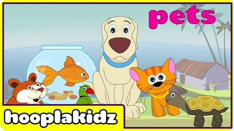 learn about pets preschool activity 184   maxresdefault