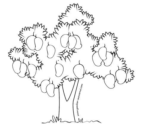 mewarnai pohon mangga