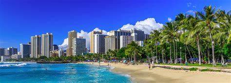 discover amazing hawaii cruises