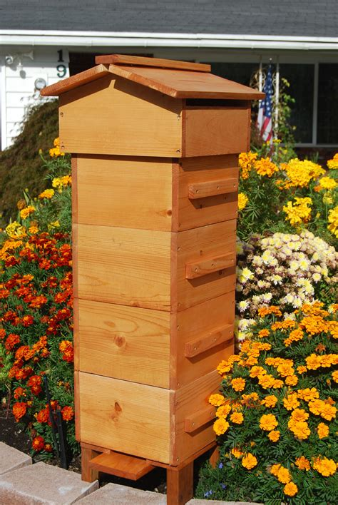 Backyard Honey Bee Hive by Diy Beehives Bee Enthusiast