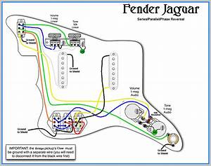 Fender Jaguar Hh Wiring Diagram