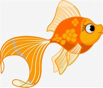 Goldfish Cartoon Clipart Painted Clip Library Graphic