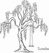 Tree Swing Drawing Bark Coloring Clipart Pencil Arbre Trees Thinkstockphotos Ink Avec Willow Albero Immagini Stockillustraties Illustrazione sketch template