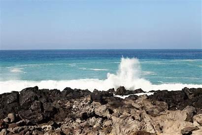 Hawaii Island Travel Guide Alyssa Wear Coffee