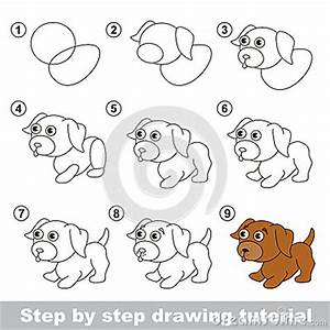 Drawing Tutorial. How To Draw A Little Puppy Stock Vector ...