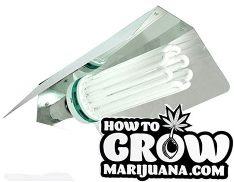 fluorescent lighting compact fluorescent grow light