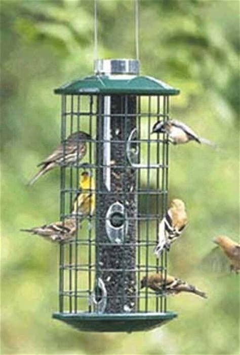 16 best images about anti squirrel bird feeders on