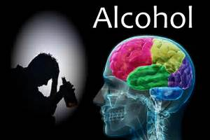 Alcohol's Detrimental Long-Term Effects on Both the Brain and Body 6 Day Body Makeover