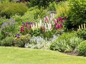 Top, Tips, And, Ideas, For, A, Better, Garden, Border