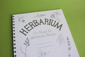 Was Ist Ein Herbarium : herbarium ein album fuer getrocknete pflanzen f r amy pinterest craft ~ A.2002-acura-tl-radio.info Haus und Dekorationen