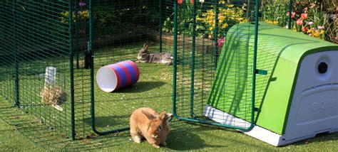 omlet rabbit hutch outdoor rabbit run large outdoor rabbit enclosure