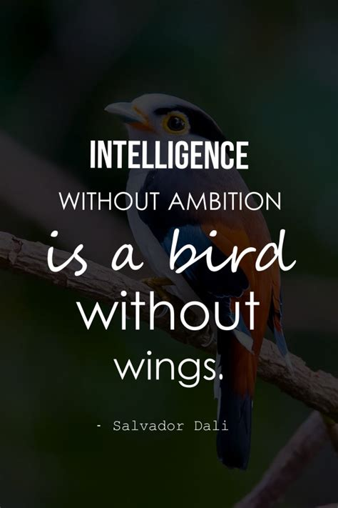 collection  ambition quotes  ambition sayings