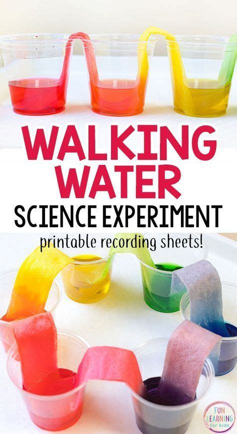 rainbow walking water science experiment  kids water