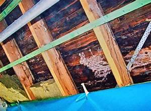 Alkohol Aus Der Apotheke Gegen Schimmel : freigelegte dachd mmung aus mineralwolle hinter dampfsperre durch sommerkondensat und ~ Markanthonyermac.com Haus und Dekorationen