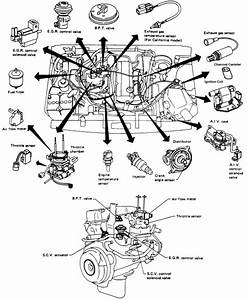 I Have A 1992 Nissan 2wd Truck With The 2 4 L Engine  It