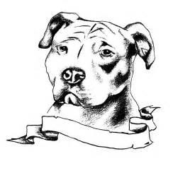 Pitbull Tattoo Drawings