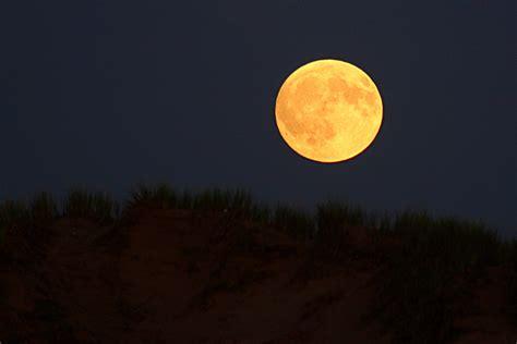 yellow moon picture weneedfun