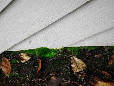 Fix Clogged And Leaky Gutters Metal Roofing Statesville Nc How To Lay Cedar Shingles On A Shed Roof Uk Dispose Of Asbestos Gutters And Downspouts Pvc Membrane Suppliers Owens Corning Duration Shingle Colors Efficiency Solar Tiles Pyramid Omaha Ne