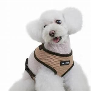 Harnais Gros Chien : harnais pour chien beige puppia oh pacha ~ Nature-et-papiers.com Idées de Décoration