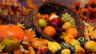Harvest Fall Wallpapers Autumn Background Resolutions General