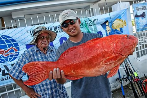 lapu philippines fish grouper fishing cebu coral trout suno 10kg caught