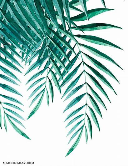 Palm Tropical Watercolor Wall Printables Fronds Leaf