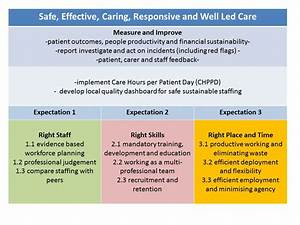 Safe Sustainable And Productive Staffing  Case Studies