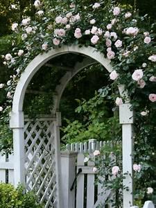 Rosen Für Rosenbogen : zauberhafte rosenb gen im garten 21 tolle vorschl ge ~ Orissabook.com Haus und Dekorationen