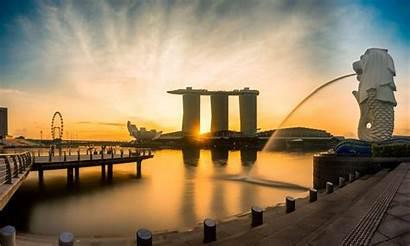 Singapore Marina Merlion Morning Sunrise Flyer Golden