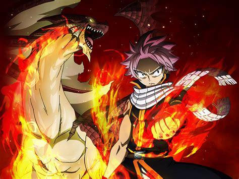 desktop wallpaper fairy tail anime boy dragon hd image