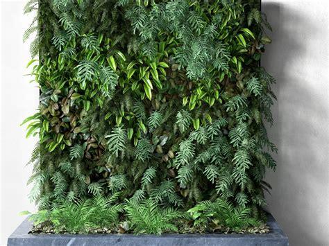 Plants For Vertical Gardens by Vertical Garden