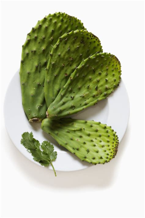 How to Cook Mexican Cactus (Nopales) | eHow
