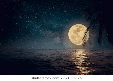Moonlight Images Stock Photos Vectors Shutterstock