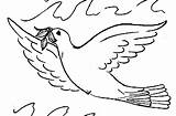 Pigeon Coloring Pages Pigeons Willems Mo Template Animated Coloringpages1001 sketch template