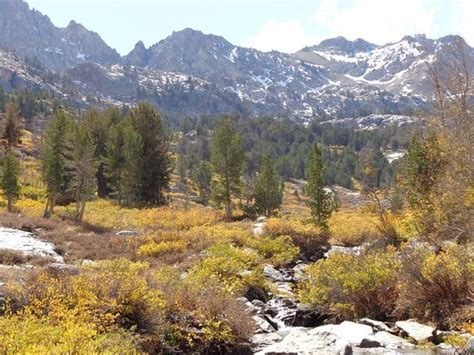 Humboldt National Forest (Elko) - All You Need to Know ...