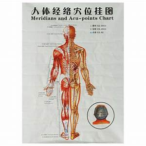Chinese Medicine Body Acupuncture Points Meridians And Acupoints Chart Map Chart