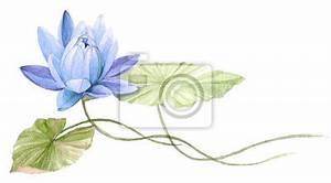 Dessin Fleurs De Lotus : n nuphar ou fleur de lotus sur leau bleu dessin tir par peintures murales tableaux tang ~ Dode.kayakingforconservation.com Idées de Décoration