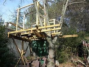 Cabane Dans Les Arbres Construction : cuisine decor cabane jardin plan lyon cabane en bois dans les arbres plan cabane arbre palette ~ Mglfilm.com Idées de Décoration