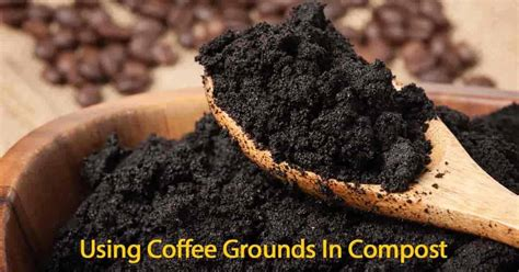 Coffee Grounds In Compost Gifts For Coffee Lovers Under  Spyhouse Beans Station Restaurant Menu Free Booths And Beer On Snelling King Street Hammersmith