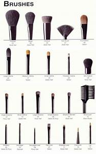 A Guide Of Makeup Brushes And Their Uses  Incredibly