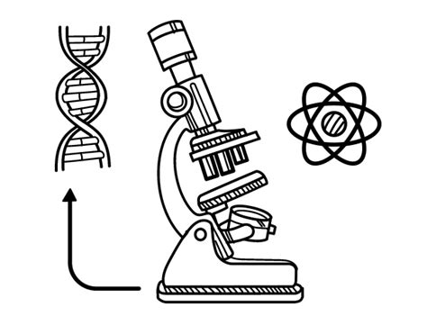 biology coloring book biology coloring pages