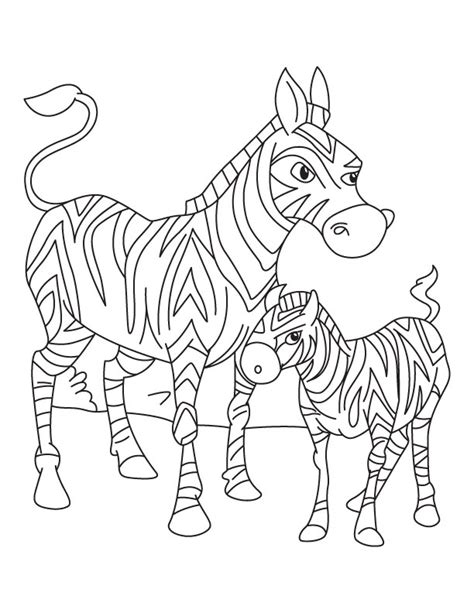 baby zebra coloring pages coloring pages