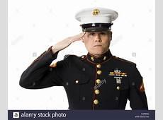 US marine saluting Stock Photo, Royalty Free Image