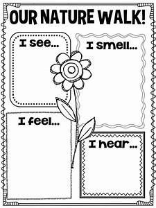 13 Best Images Of Nature Worksheets For Kindergarten