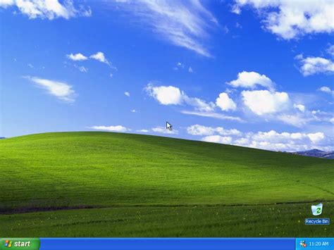 when your backyard tries to be the windows xp default