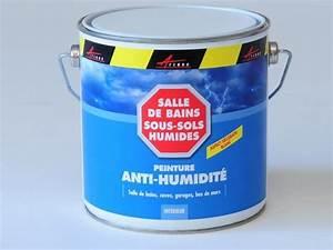 Anti Humidité Mur : peinture anti moisissure anti humidit murs humides ~ Edinachiropracticcenter.com Idées de Décoration