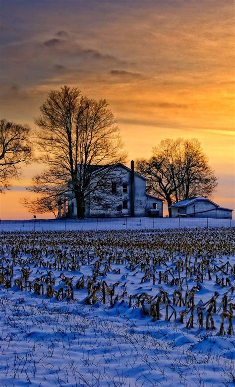 Best 25+ Winter Sunset Ideas On Pinterest  Pink Snow, Amazing Sunsets And Winter Scenery Pictures