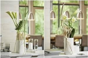 Deko Für Bodenvase : au ergew hnliche deko f r schlichte vasen tiziano ~ Indierocktalk.com Haus und Dekorationen