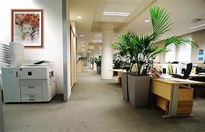 Idée Décoration Bureau Professionnel : photo decoration d coration bureau pro ~ Preciouscoupons.com Idées de Décoration